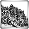 "Winter Lands 3D Live Wallpaper – обои ""Зимний мир"""