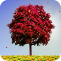 Autumn Trees android