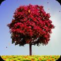 Обои Осенние деревья - icon