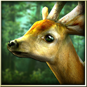 Forest HD - icon