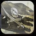 "Pirate Flag – обои ""пиратский флаг"""