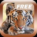 Изучаем Звуки Животных Free